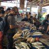 01 Ting at fish market